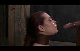 خروس جوان عکس کوس وکونم مکیدن و طاس لعنتی.